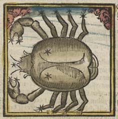 New Moon in Cancer, the Crab