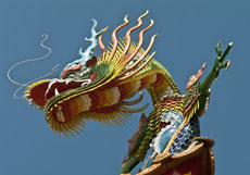 New Moon in Aquarius ~ Chinese Year of the Dragon