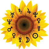 Sunflower with horoscope planets